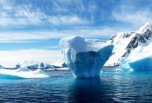 科学家发现全球变暖造成南极地表植物变多