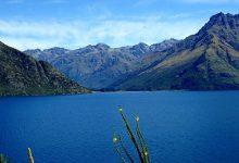 新西兰五年旅游签证申请指南