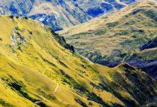 新西兰南岛阿特利斯步道 Atleys Track