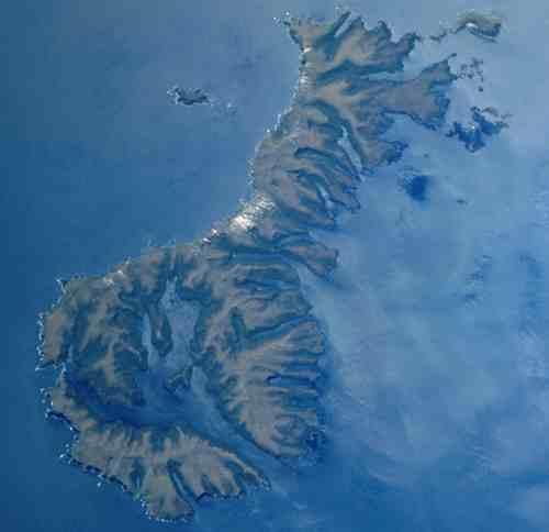 auckland-islands