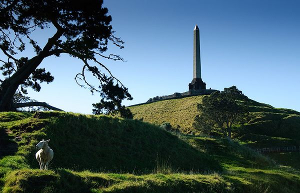 auckland-onetreehill