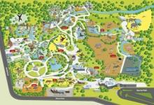奥克兰动物园Auckland Zoo