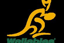 澳大利亚国家橄榄球队Wallabies