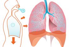 呼吸系统医学英文为何使用 Respiration 而不是 Breathing?
