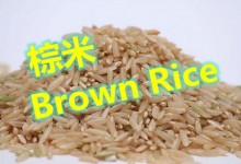 棕米Brown Rice的知识