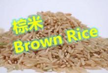 棕米Brown Rice的知识