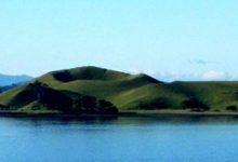 奥克兰布朗斯岛 Browns Island