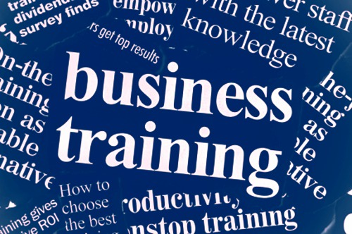business-training-and-advice-grant