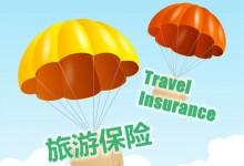 新西兰保险公司提供的旅游保险通常涵盖什么方面?