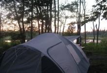 新西兰露营地的实用知识