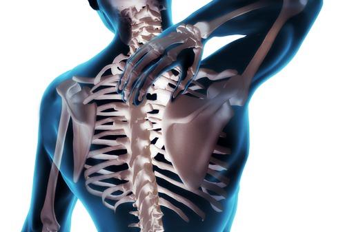 chiropractor-in-nz