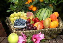 如何在新西兰挑选和购买水果?