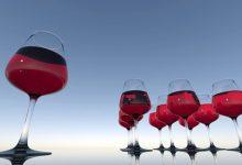 最百搭的佐餐葡萄酒应该怎么选?