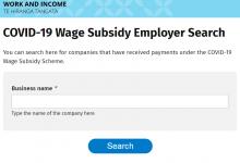使用工作收入局提供的工具查看雇主工资补贴情况