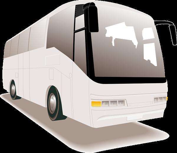 deadly-tourist-bus-crash-in-northisland