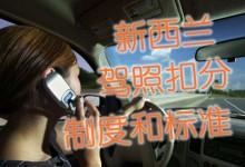 新西兰驾驶执照扣分制度Demerit Points