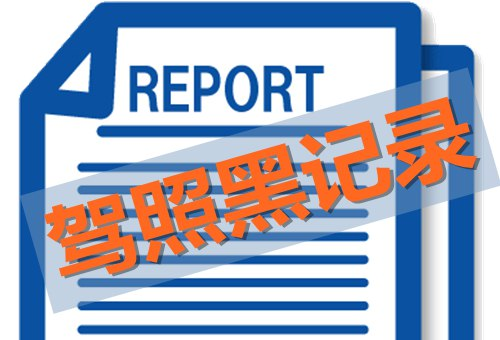 demerit-points-and-suspension-history-report