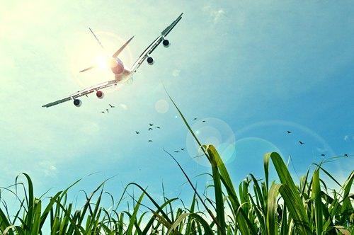 direct-or-multi-city-flight