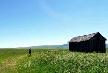 新西兰徒步路线中的山间小木屋价格大约是多少?