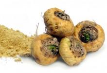 [短百科]新西兰种植玛卡吗?