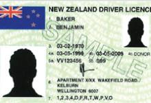 新西兰小型车辆驾照介绍