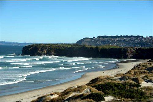 dunedin-beach