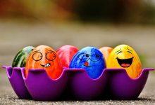 简单办法判断鸡蛋的新鲜程度