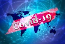 单日新增翻倍,新西兰已确诊20例新冠病毒感染者