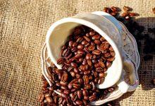 为什么新西兰的意式浓缩咖啡用的是深度烘焙的咖啡豆?