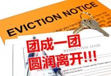 新西兰租客驱逐令Eviction Order