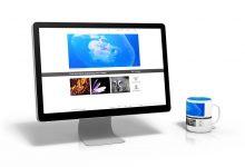 看新西兰免费图片网站正式运行