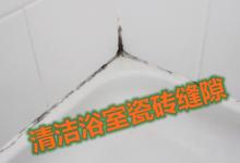 新西兰浴室厕所瓷砖缝隙的污渍如何去除?