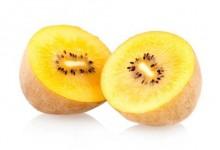 新西兰黄金奇异果Golden Kiwifruit