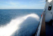 从奥克兰乘船前往大障碍岛 Great Barrier Island
