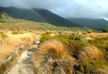 新西兰南岛著名徒步路线希菲步道 Heaphy Track