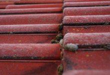 瓦顶房屋应该用高压水枪清洁还是用化学药品清洁?