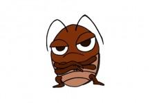 如何避免家中出现蟑螂?