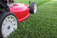 如何选择打草机Lawn Mower?