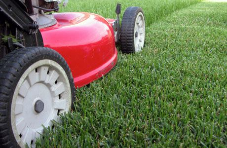how-to-choose-lawn-mower
