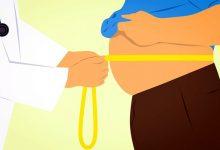 新西兰哪个年龄段的胖子最多?