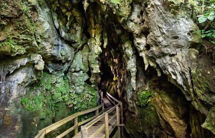 kawiti-caves