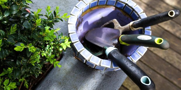 keep-an-eye-on-your-gardening-tools