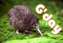 新西兰问候语G'day