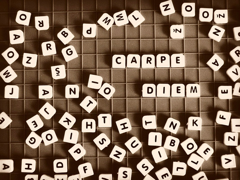 latin-phrases-you-could-see-everyday