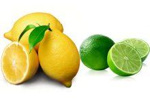 柠檬Lemon和青柠Lime的区别