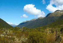 新西兰南岛景点刘易斯山口 Lewis Pass