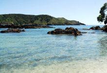 新西兰北领地的美丽海湾 Maitai Bay