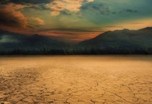 新西兰南岛马尔堡地区遭受罕见干旱灾害
