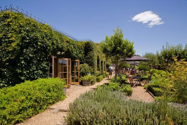 mudbrick-vineyard-restaurant