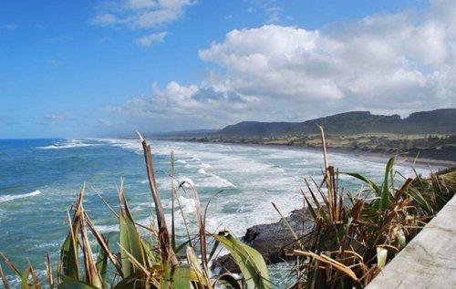 muriwai-beach1